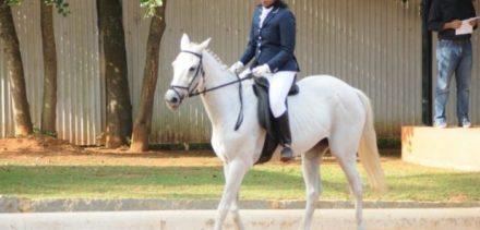 Saddle up on horse power